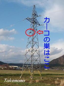 カーコの鉄塔.jpg